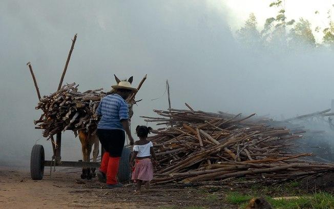 Brasil tem 1,8 milhão de crianças e jovens que exercem trabalho infantil